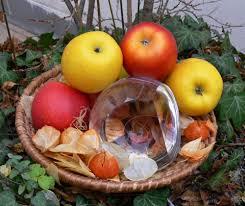 Obrázek ovoce